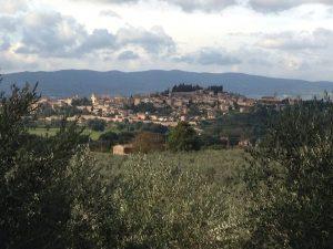 Il Turismo Enogastronomico e dell'Olio di Oliva
